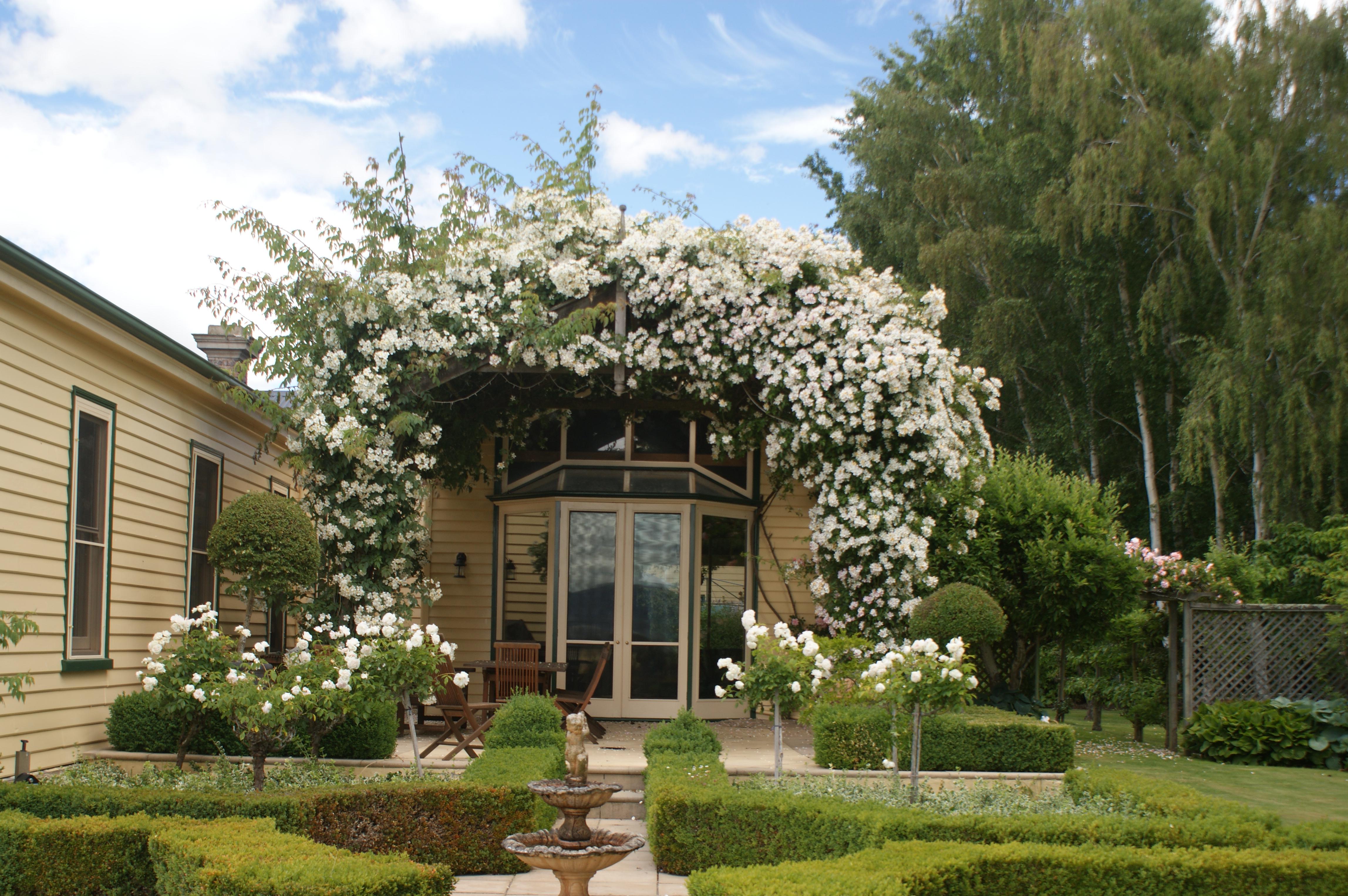 ericvale_roses_tasmanian_rose_gardens_1